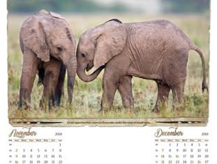 Sinh động với mẫu lịch về Động vật hoang dã 2014 - Vietart Advertising